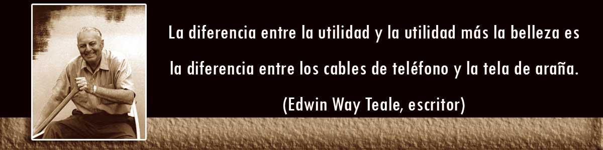 Cables textiles - frases de Edwin Wark Tale