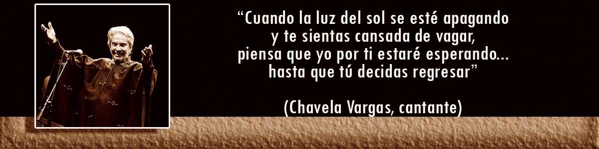 Chavela Vargas lámparas Decocables